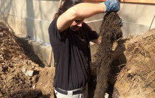 Zarostlá kanalizace kořeny, vytažení a zajištění opravy kanalizace